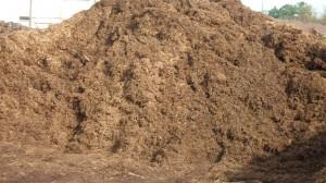 natural-brown-hardwood