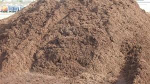 walnut-mulch